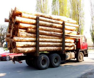 Транспортировка леса